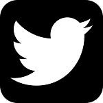 icono twitter alarmasyseguridad24h